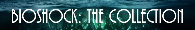 thecollectionbanner